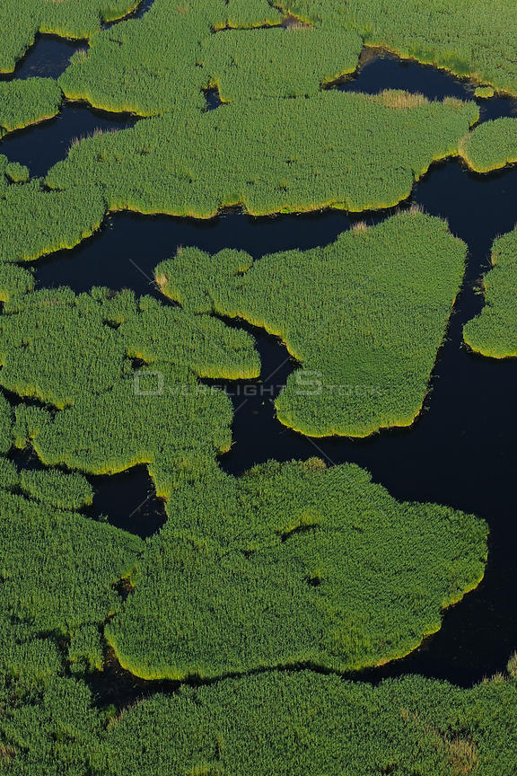 Aerial view over the Danube delta wetlands rewilding area, Romania, June 2012