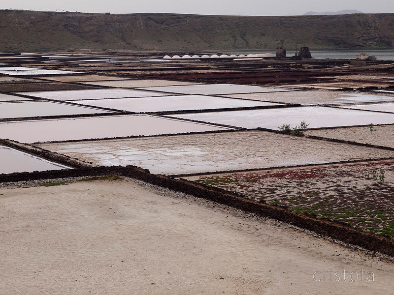 the Salinas (salt pans) de Janubio