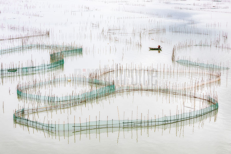 Fisherman Paddling his Boat among the Shrimp Nets