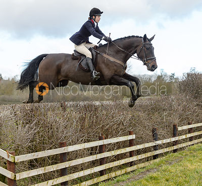The Cottesmore Hunt at Newbold 20-2 photos