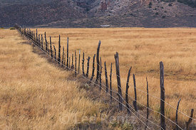 Fence on Rangeland at Vermilion Cliffs National Monument