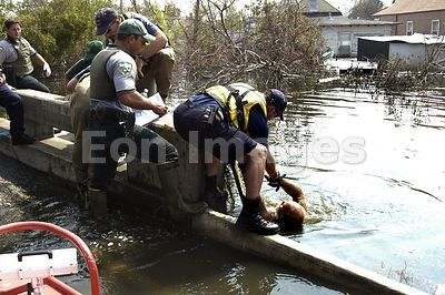 Hurricane Katrina search and rescue teams one week after flood