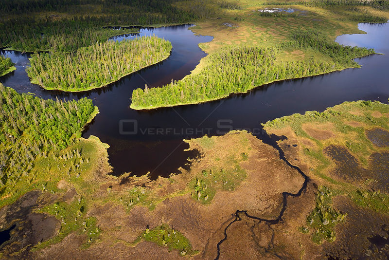 Aerial view of river flowing though peat bogs and taiga boreal forest, Sjaunja Bird Protection Area, Greater Laponia Rewilding Area, Lapland, Norrbotten, Sweden, June 2013.
