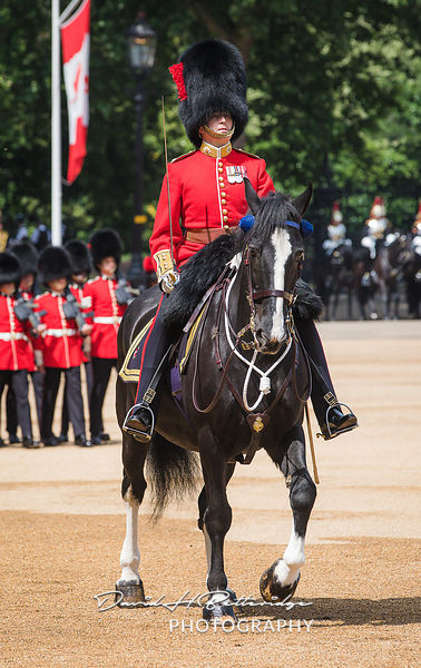 Trooping_the_Colour_8757