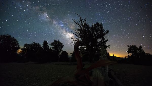 Close Up: Raw & Graceful Milky Way Runs Into Sunrise