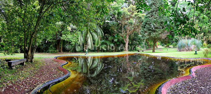 Jose do Canto garden. Ponta Delgada, Sao Miguel. Azores islands