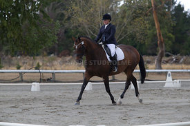 SI_Festival_of_Dressage_300115_Level_3_NCF_0093