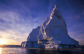 Grounded Iceberg