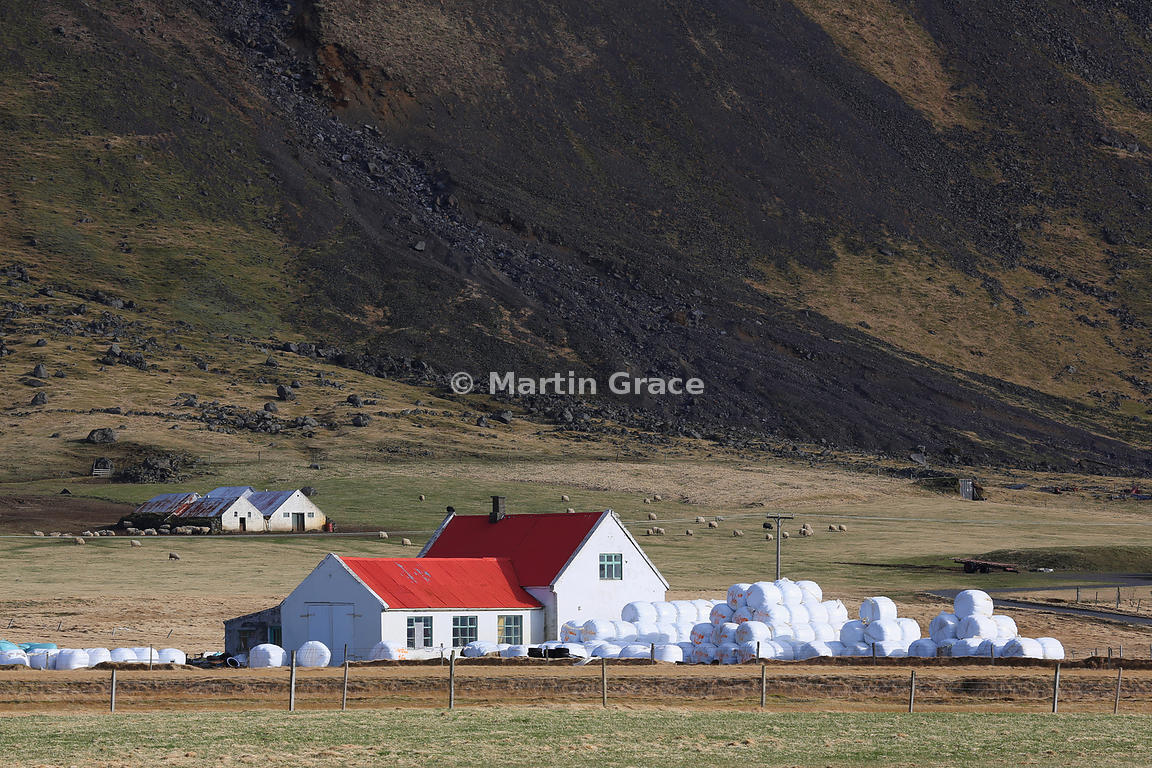 Typical farmstead on the narrow southern coastal plain of Iceland between the mountains and the sea