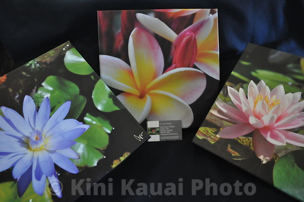Kini Kauai Gifts photos