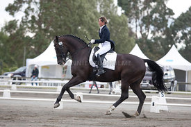 SI_Dressage_Champs_260114_024