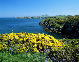 St Davids Head and Ramsey Sound, Pembrokeshire, West Wales.