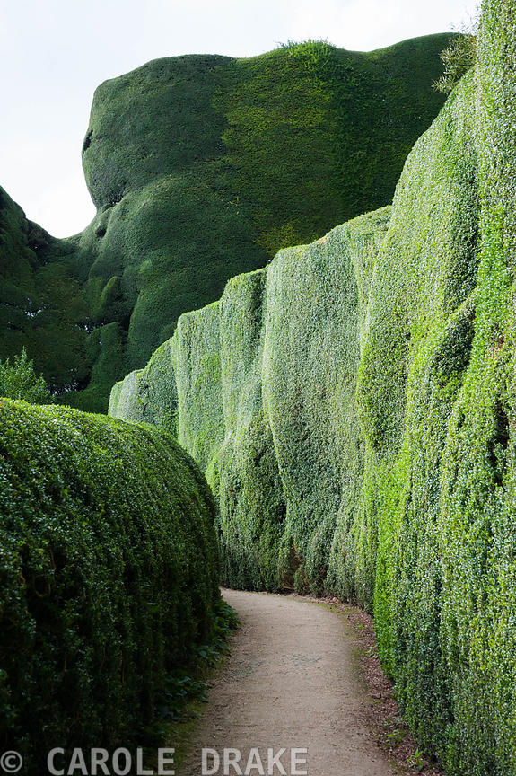 Powis Castle, Welshpool photographs