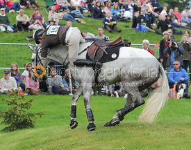 Richard Jones and ALFIES CLOVER - Bramham 2015
