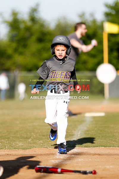 04-08-17_BB_LL_Wylie_Rookie_Wildcats_v_Tigers_TS-487