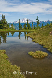 Glacier Peak viewed from a tarn in Mt. Forgotten Meadows, Mt. Baker-Snoqualmie National Forest, Cascade Mountains, Washington, USA, August, 2008_WA_4594