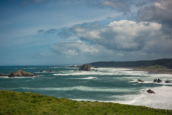Oregon_Coast-6