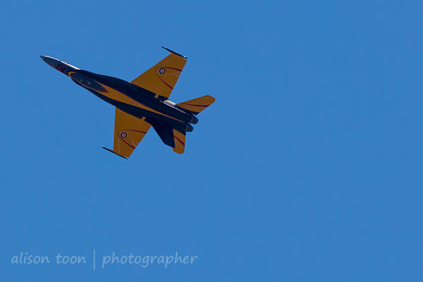 2016 Jets: Hornet and Viper photos