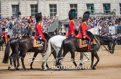Trooping_the_Colour_8740