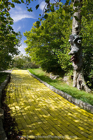 Along the Yellow Brick Road