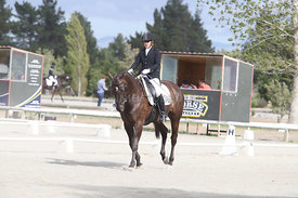SI_Festival_of_Dressage_310115_Level_4_Champ_0583
