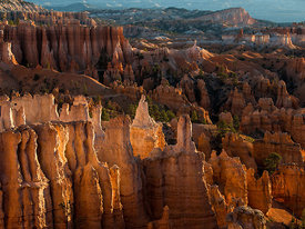 Bryce_Nation_Park_146