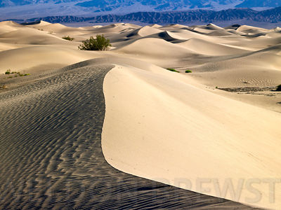 Death_Valley_May2010_162
