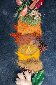 Spices and herbs on a dark background. Paprika, parsley, cumin, curcuma, pepper, anice and mustard seeds. Cooking and healthy eating concept