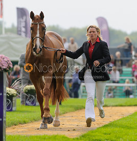 Karin Donckers and LAMICELL UNIQUE - The first vets inspection (trot up),  Land Rover Burghley Horse Trials, 3rd September 2014.