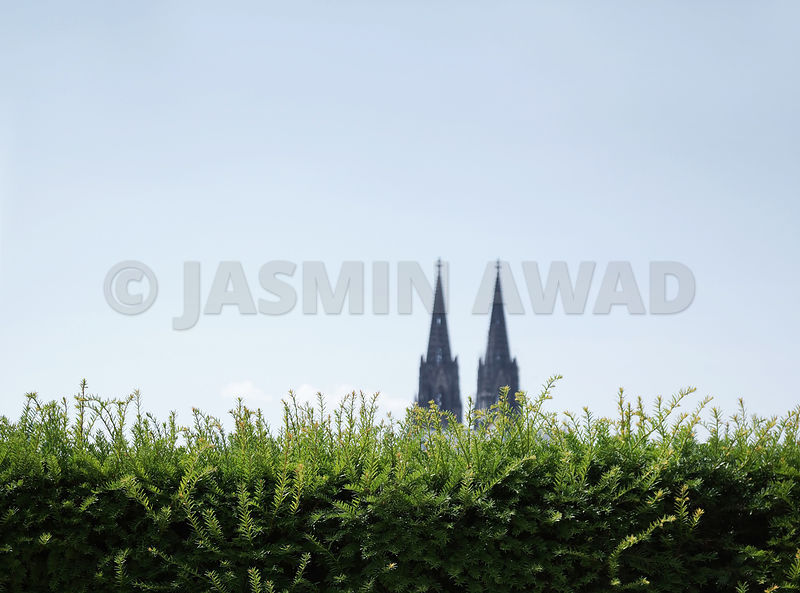 Green hedge with the two towers of cologne cathedral in the background