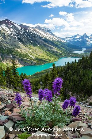 Glacier National Park- Belly River Backpacking landscape photos