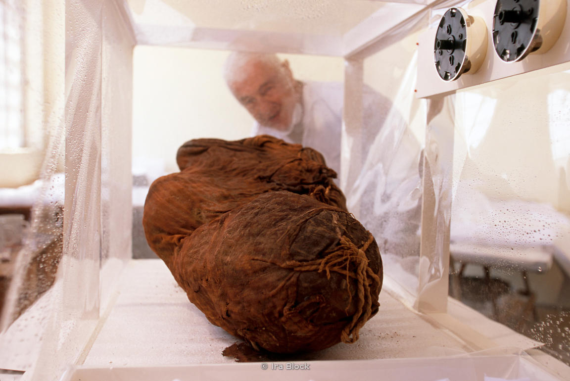 A mummy in a humidification chamber.