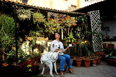 India - Delhi - Bela Gupta, Secretary of the All India Kitchen Garden Association and her dog in her roof garden