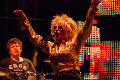 Blondie, Sunrise At Night, Citrus Heights, California, 2012