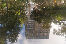 Reflection of a building at Madison Square Park in New York City.
