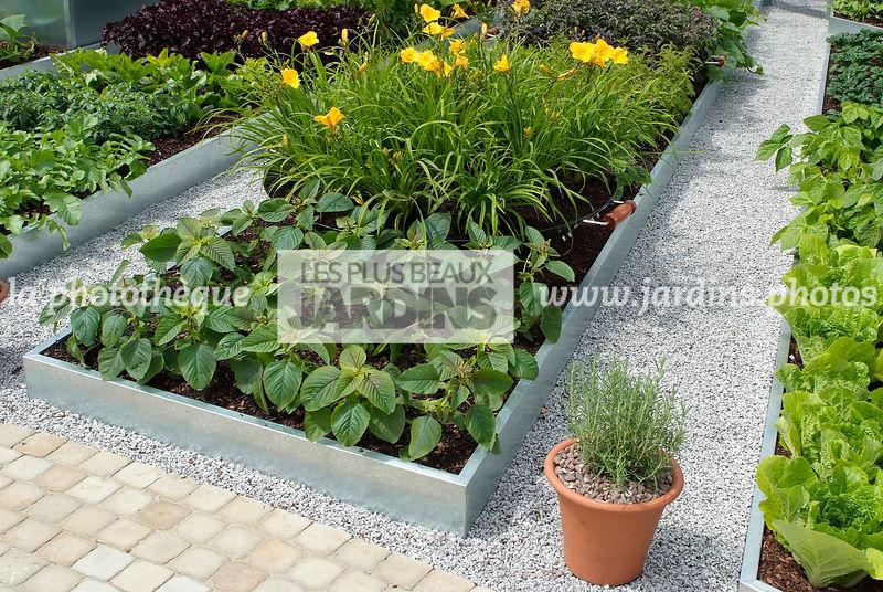 La phototh que les plus beaux jardins potager for Bac en zinc jardin