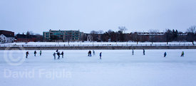 Skaters in the Riddeau Canal