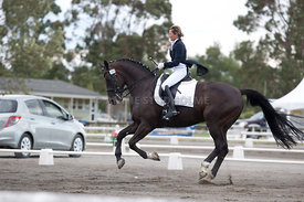 SI_Dressage_Champs_260114_027