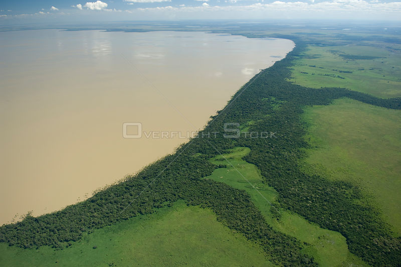 "Aerial view of Rogaguado Lake with its shores covered by ""buriti"" palm trees (Mauritia flexuosa), in the region of the great lakes of the Beni floodplains, Beni Department, Northeastern Bolivia."