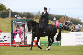 Canty_A_P_131114_Side_Saddle_1242