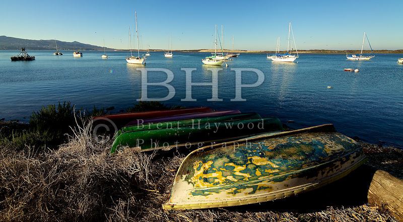 Morro-Bay-Landscape-Photography_IMG_7536
