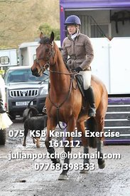 075__KSB_Kennels_Exercise_161212