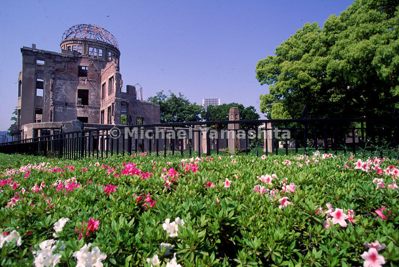 Flowers bloom outside the Atomic Bomb Memorial Dome in Hiroshima. In the immediate aftermath of the A-bombing, it was feared that nothing would ever grow here again.