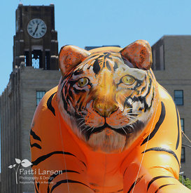 Tiger Balloon in Front of Boston Store Clock