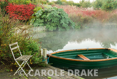 Early morning mist rises from one of the garden's lakes with rich red autumn colour provided by Euonymus alatus and the red stems of cornus with the huge, textured leaves of Gunnera manicata. Lady Farm, Chelwood, Somerset, UK