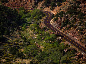 Zion_National_Park_2012_102