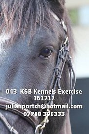 043__KSB_Kennels_Exercise_161212