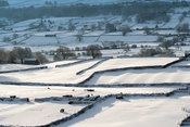 Fields around Askrigg in Wensleydale, North Yorkshire, covered in snow after a snow storm.