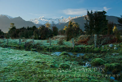 Stream flowing next to a rustic wire and wood fence though a green grassy meadow on the edge of a forest, snow capped mountain peaks in the distance (Aoraki / Mount Cook)
