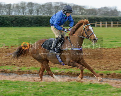 Pony Racing Rallies photos